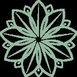 Precision Wellness Therapeutic Massage and Esthetics Icon
